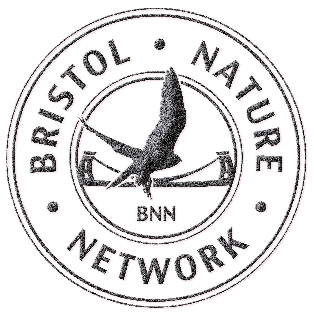Bristol Nature Network